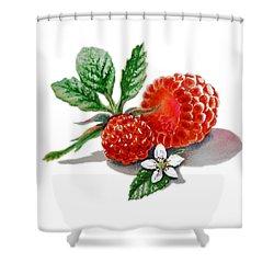 Artz Vitamins A Very Happy Raspberry Shower Curtain by Irina Sztukowski
