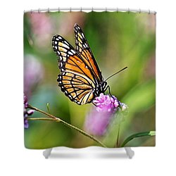 Viceroy Butterfly Shower Curtain by Christina Rollo