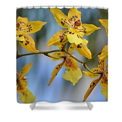 Victorian Exotic Blooms  Shower Curtain by Sonali Gangane