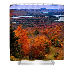 View From Mccauley Mountain II Shower Curtain by David Patterson
