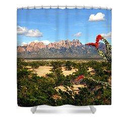 View From Roadrunner Shower Curtain by Kurt Van Wagner