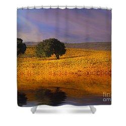 Vineyard Magic Shower Curtain by Stephanie Laird