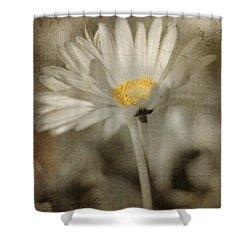 Vintage Daisy Shower Curtain by Joann Vitali