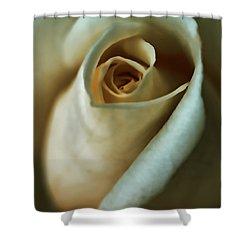 Vintage Macro Rose Flower Shower Curtain by Jennie Marie Schell