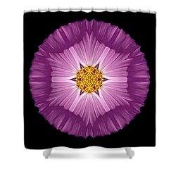 Violet Cosmos II Flower Mandala Shower Curtain by David J Bookbinder