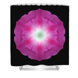 Violet Morning Glory Flower Mandala Shower Curtain by David J Bookbinder