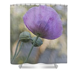 Vivian Shower Curtain by Elaine Teague