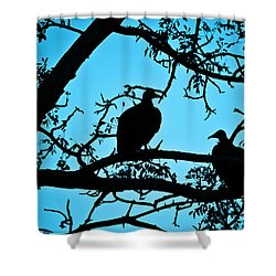 Vultures Shower Curtain by Delphimages Photo Creations
