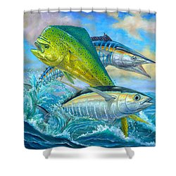 Wahoo Mahi Mahi And Tuna Shower Curtain by Terry  Fox