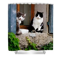 Waiting For Dinner Shower Curtain by Lainie Wrightson