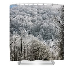 Waiting Out Winter Shower Curtain by John Haldane