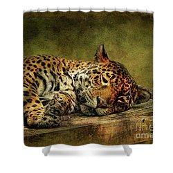 Wake Up Sleepyhead Shower Curtain by Lois Bryan