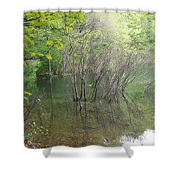 Walden Pond Shower Curtain by Catherine Gagne