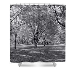 Walk In The Park Shower Curtain by Kim Hojnacki