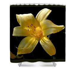 Warm Glow Shower Curtain by Rona Black