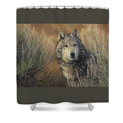 Watchful Shower Curtain by Lucie Bilodeau