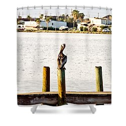 Watching Over The Bay Shower Curtain by Scott Pellegrin