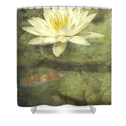 Water Lily Shower Curtain by Scott Norris
