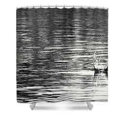 Water Shower Curtain by Prajakta P