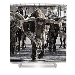 Watercolor Longhorns Shower Curtain by Joan Carroll
