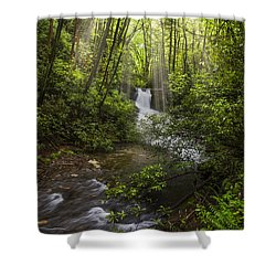 Waterfall In The Forest Shower Curtain by Debra and Dave Vanderlaan