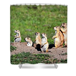 We Are Family Shower Curtain by Lana Trussell