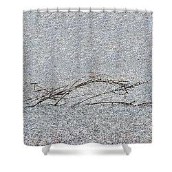 Weed In Frozen Pond Shower Curtain by Dan Friend