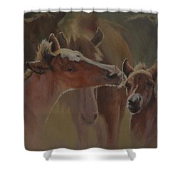 Welcome Party Shower Curtain by Mia DeLode