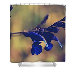 We're Two Of A Kind Shower Curtain by Laurie Search