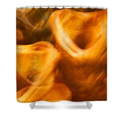Western Boots #2 Shower Curtain by Stuart Litoff