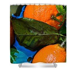 Wet Tangerines Shower Curtain by Alexander Senin