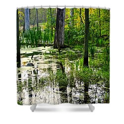 Wetlands Shower Curtain by Frozen in Time Fine Art Photography