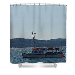 Whale Watching At Bar Harbor Shower Curtain by Dora Sofia Caputo Photographic Art and Design