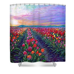 Tulip Fields, What Dreams May Come Shower Curtain by Jane Small