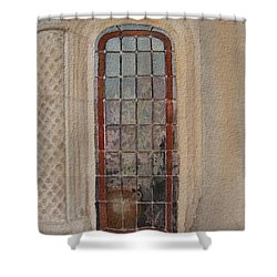 What Is Behind The Window Pane Shower Curtain by Mary Ellen Mueller Legault