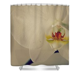 What Love Felt Like Shower Curtain by Laurie Search