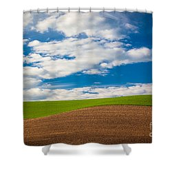 Wheat Wave Shower Curtain by Inge Johnsson