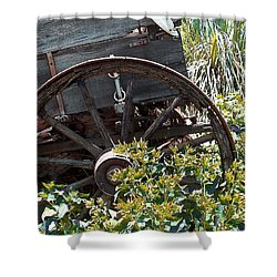 Wheels In The Garden Shower Curtain by Glenn McCarthy Art and Photography