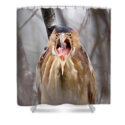 Whhhaattttttt Shower Curtain by Lloyd Alexander