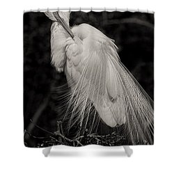 Whispy And Delicate Shower Curtain by Deborah Benoit