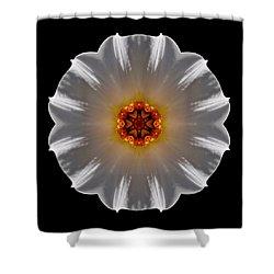 White And Orange Daffodil Flower Mandala Shower Curtain by David J Bookbinder