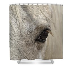 White Beauty D1412 Shower Curtain by Wes and Dotty Weber