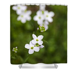 White Cuckoo Flowers Shower Curtain by Christina Rollo