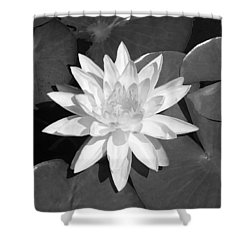 White Lotus 2 Shower Curtain by Ellen Henneke