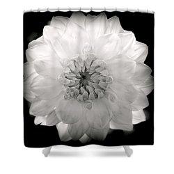 White Magic Shower Curtain by Karen Wiles