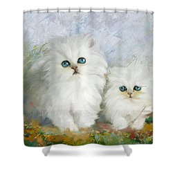White Persian Kittens  Shower Curtain by Catf