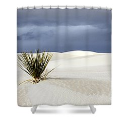 White Sands Dark Sky Shower Curtain by Bob Christopher