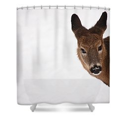 White Tail Babe Shower Curtain by Karol Livote