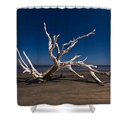 White Tree Shower Curtain by Debra and Dave Vanderlaan