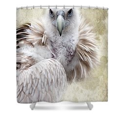 White Vulture  Shower Curtain by Barbara Orenya